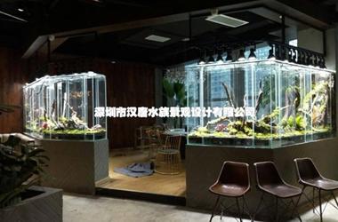 静幽餐厅定制雨林缸