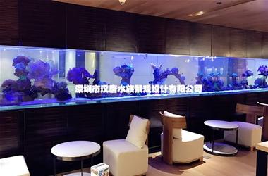深圳蓝天教育亚克力海水缸