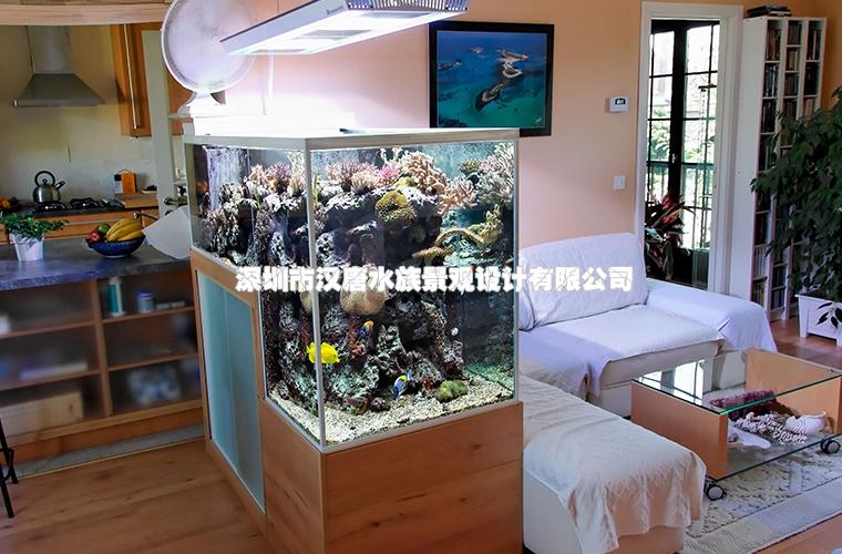 台阶式海水缸