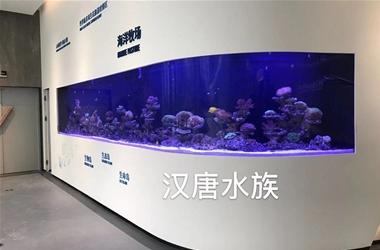 深圳坝光新区展厅