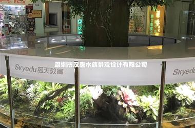圆柱雨林缸