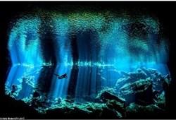 令人震撼的水下摄影(一)